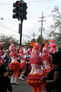 High school cheerleaders/dancers aren't the only ones to perform in these Mardi Gras parades.